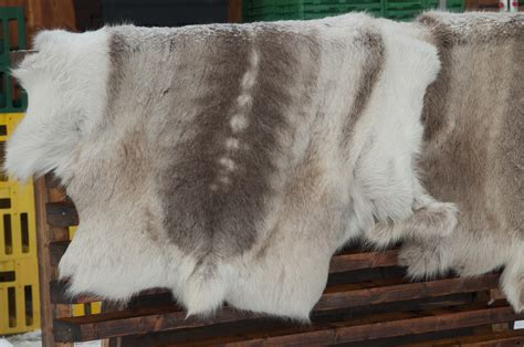 Cowhides International Reviews by Common Misconceptions About Cow Skin Rugs