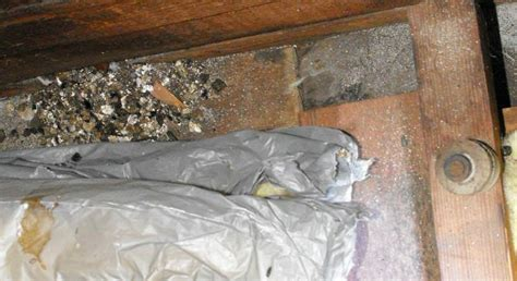 vermiculite insulation   attic charles buell