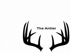 Deer Antler - ClipArt Best
