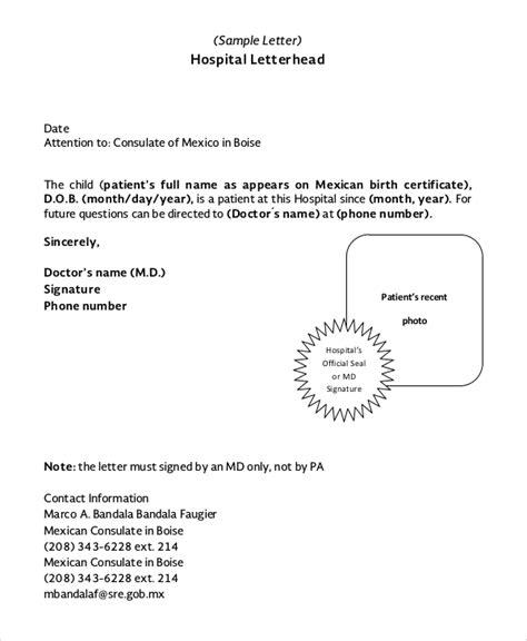 letterhead sample  examples   word
