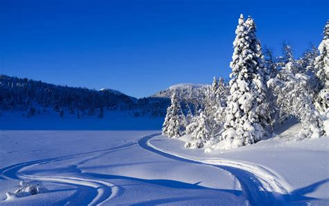 3d Winter Wallpaper by Winter Backgrounds Wallpapers Hd 3d