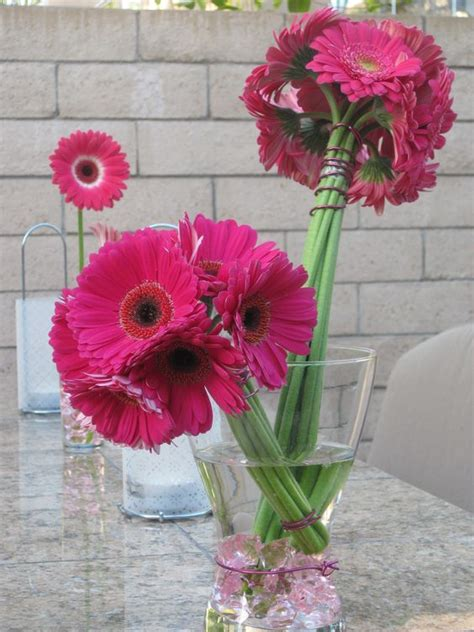Gerber Daisy Bouquets Viceroy Fashion Themed Birthday
