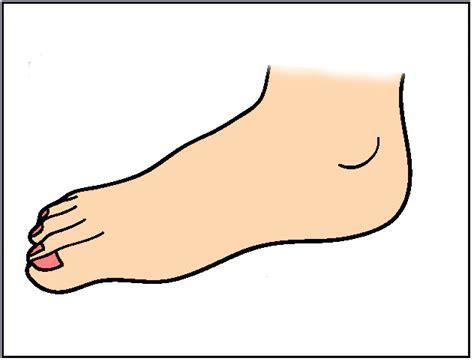 Free Foot Cartoon Cliparts, Download Free Clip Art, Free