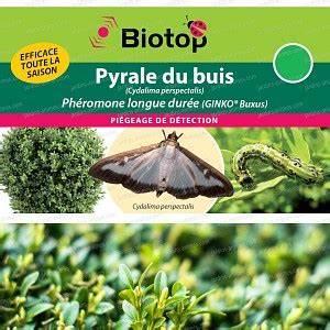 Pyrale Du Buis Traitement Bio : traitement pyrale du buis jardins ~ Melissatoandfro.com Idées de Décoration