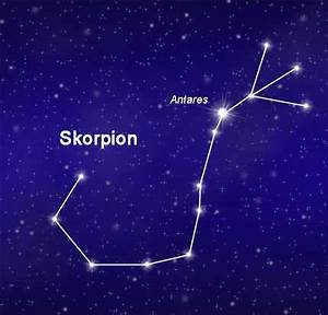 Skorpion Sternzeichen Frau : sternbild skorpion scorpio alle infos zu lage und ursprung ~ Frokenaadalensverden.com Haus und Dekorationen