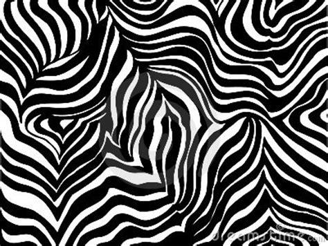 zebra stripe background royalty  stock images image