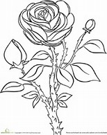 HD Wallpapers Coloring Pages Rose Garden