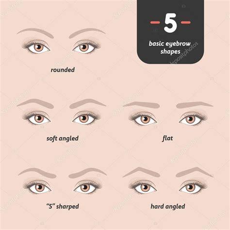 basic eyebrow shapes stock vector  iharlamoffpro