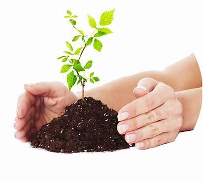 Compost Composting Process Natural Clip Waste Transparent