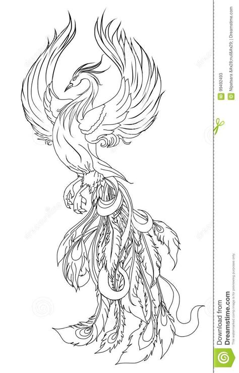 Pin by Second Nature Succulents on tatoo   Phoenix back tattoo, Bird illustration, Character design