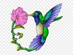 Library of clip black and white stock hummingbird png ...