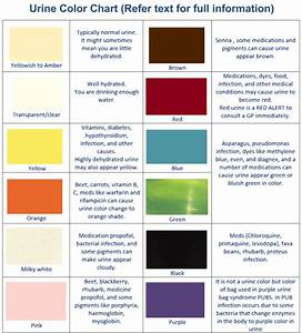 Urine Colors Chart Medications And Food Can Change Urine