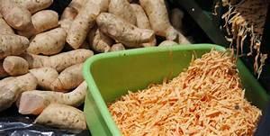 Orange-flesh sweet potato the solution to Vitamin A ...