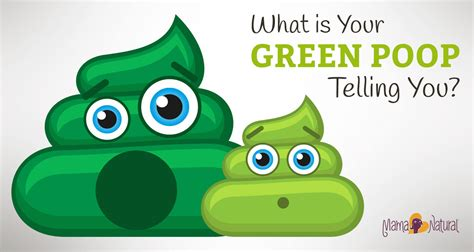 What Is Your Green Poop Telling You About Your Health