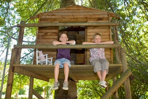 Fun Kids Tree Houses (picture Ideas And Examples
