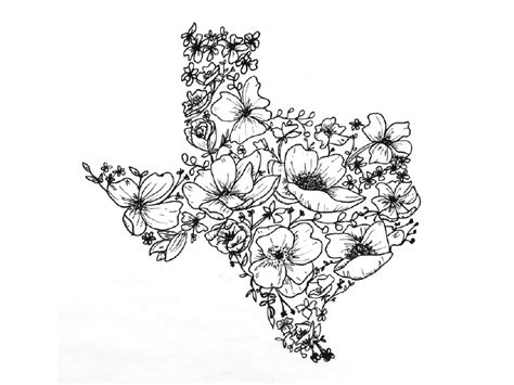 texas wildflowers  rorymade  dribbble