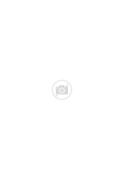 Frill Shift Short Sleeve Dresses Missguided