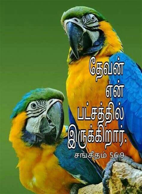 God quotes motivational status in tamil. Pin on BIBLE VERSES WITH IMAGES IN TAMIL