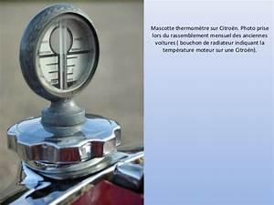Bouchon De Radiateur Voiture : bouchon de radiateur les plus belles mascottes ~ Medecine-chirurgie-esthetiques.com Avis de Voitures