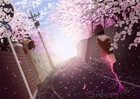 anime girls school uniform cherry blossom wallpapers hd