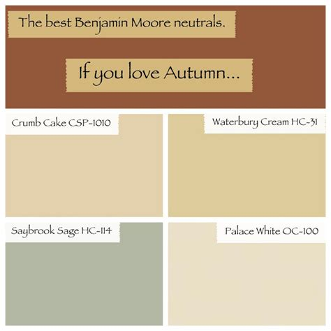 warm neutral paint colors alluring warm neutral