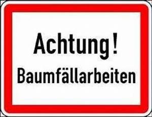 Baumwurzel Fräsen Preise : baumf llung baumholder baumf llarbeiten in baumholder ~ Eleganceandgraceweddings.com Haus und Dekorationen