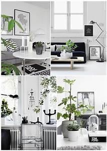 Schwarz Weiß Wohnzimmer : wohnen schwarz wei mit pflanzen zuhause wohnzimmer wohnzimmer schwarz weiss schwarz wei ~ Orissabook.com Haus und Dekorationen