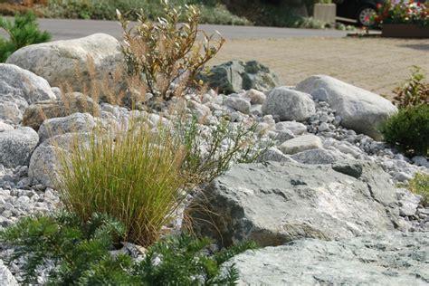 winterharte graser garten awesome gräser für steingarten gallery thehammondreport