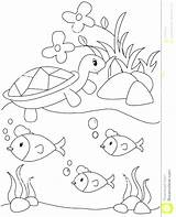 Pond Coloring Pages Royalty Habitat Animals Printable Arctic Template Animal Getcolorings Print Getdrawings Plants sketch template