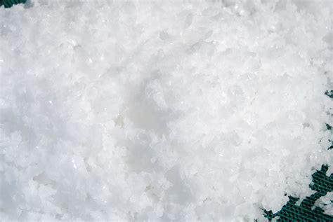 le de sel le sel de salies de b 233 arn
