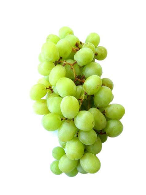white grapes fruits white grapes good  baking types