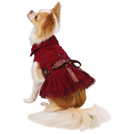 small dog christmas outfits xsmall dog clothes dress the dog clothes for your pets