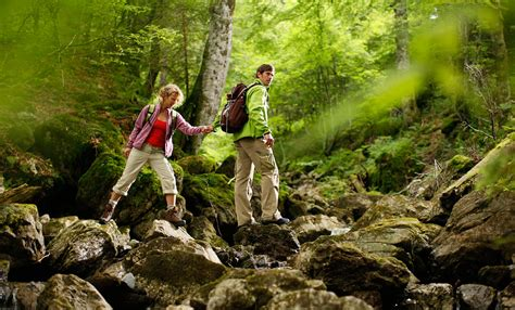 national cuisine of bavaria experience nature landscapes outdoor activities