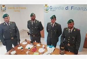 Torino  Steroidi Anabolizzanti E Prodotti Dopanti  Maxi Sequestro