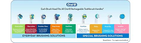 Amazon.com: Oral-B Power Sensitive Replacement Electric