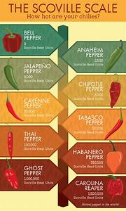 Hints For Growing Chili Peppers At Home Heirloom