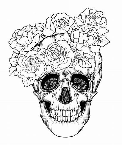 Skull Roses Face Coloring Halloween раскраски из