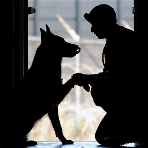 female prisoners training service dogs  veterans