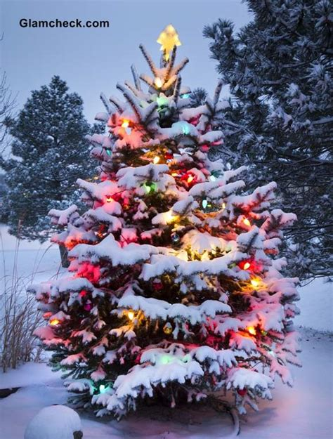 inspired traditional outdoor christmas decorations tree