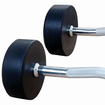 Fixed Barbell Weight Straight Directhomegym Curl Barbells