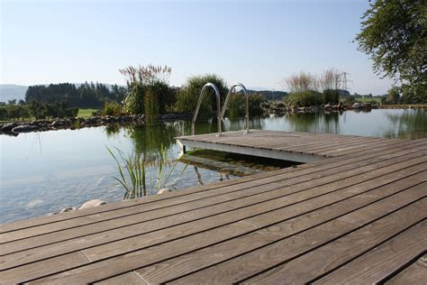 Steg Bauen Teich by Steg Bauen Teich