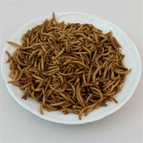 mealworms purely poultry
