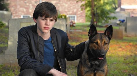 max review  darned good dog   passable dog