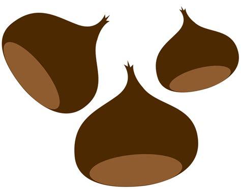 clipart castagne chestnut chestnuts autumn 183 free image on pixabay