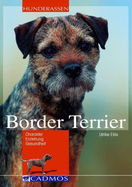 border terrier buch ulrike ellis