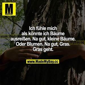 Ich Fühle Mich Als Könnte Ich Bäume Ausreißen : ich f hle mich als k nnte made my day ~ Markanthonyermac.com Haus und Dekorationen