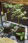Best 25+ Small japanese garden ideas on Pinterest | Small japanese small zen garden