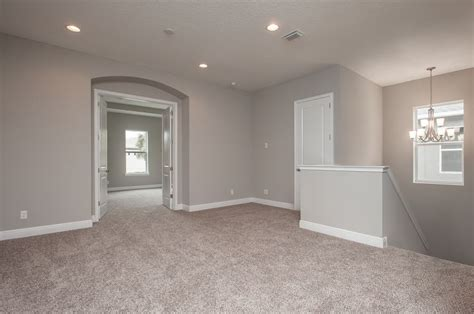 sherwin williams colonnade gray sw shaw   wind