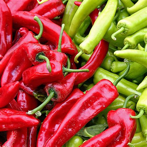 chili cuisine your chilies