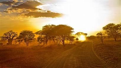 Sunrise African Wallpapers Forest Desktop Africa 4k